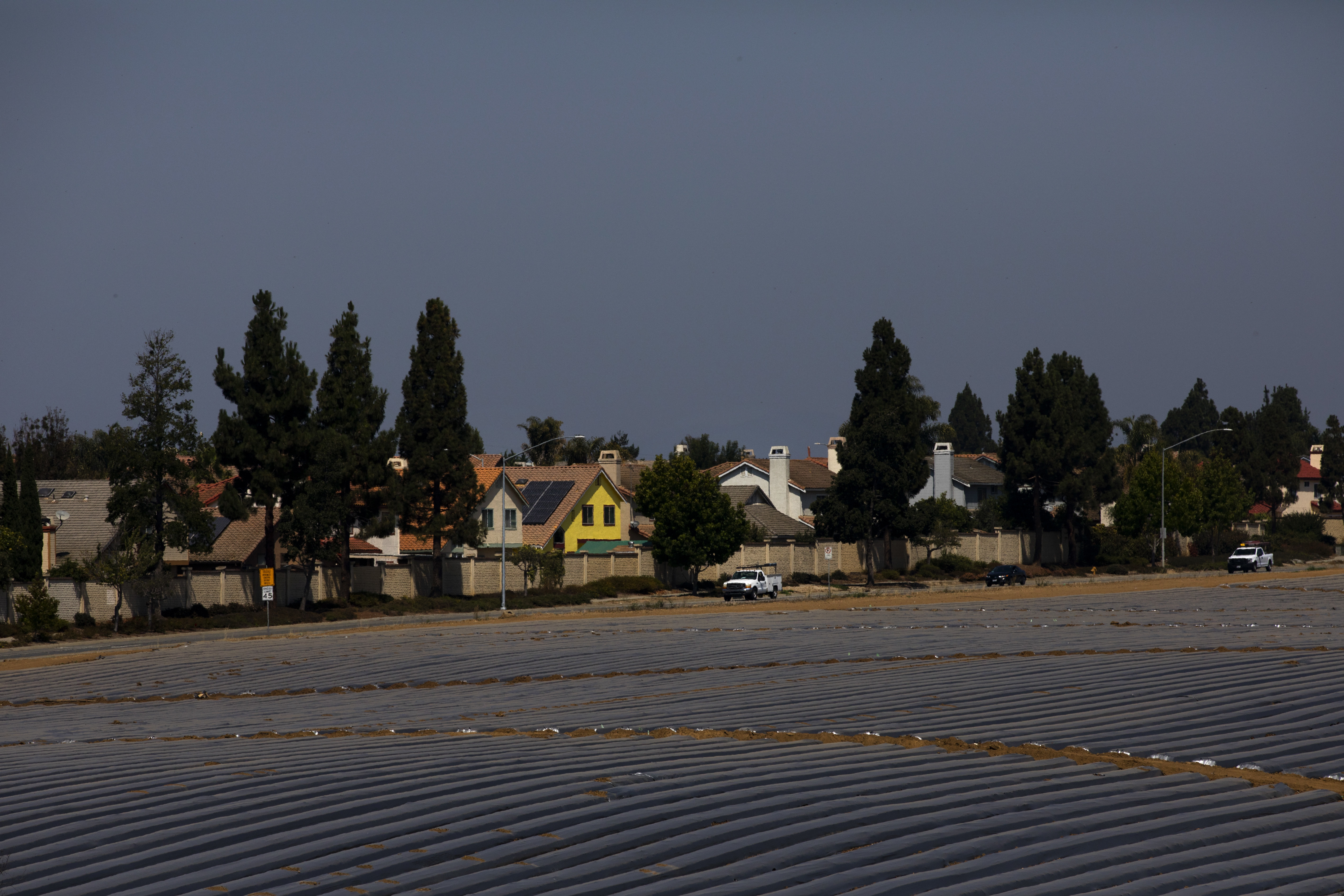 In this Tuesday, Sept. 4, 2018, photo, pickup trucks run between farmlands and residential areas in Salinas, Calif. Salinas is an affordable location compared to Silicon Valley, where median home prices are about $1 million, but with a less-wealthy population and a median home price that has ballooned to about $550,000, it's one of the least affordable places in America. (AP Photo/Jae C. Hong)