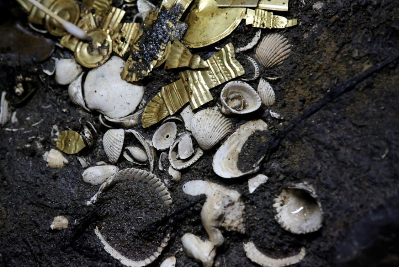 Gold pieces formed into symbols are seen at a site where a sacrificed young wolf elaborately adorned with some of the finest Aztec gold has been discovered, adjacent to the Templo Mayor, one of the main Aztec temples, in Mexico City, Mexico June 22, 2017. Picture taken June 22, 2017. REUTERS/Henry Romero