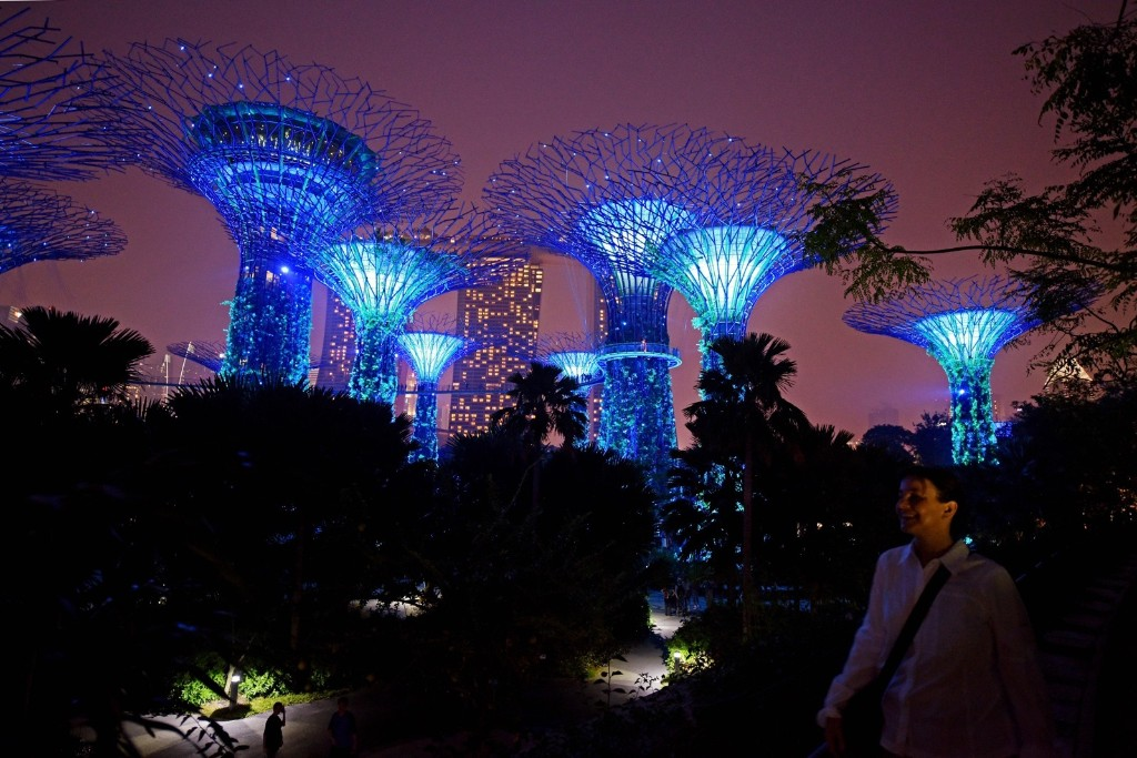 The supertrees at Singapore's Gardens by the Bay are lit in the blue hues of the United Nation's logo in celebration of its 70th anniversary. AP Photo/Joseph Nair