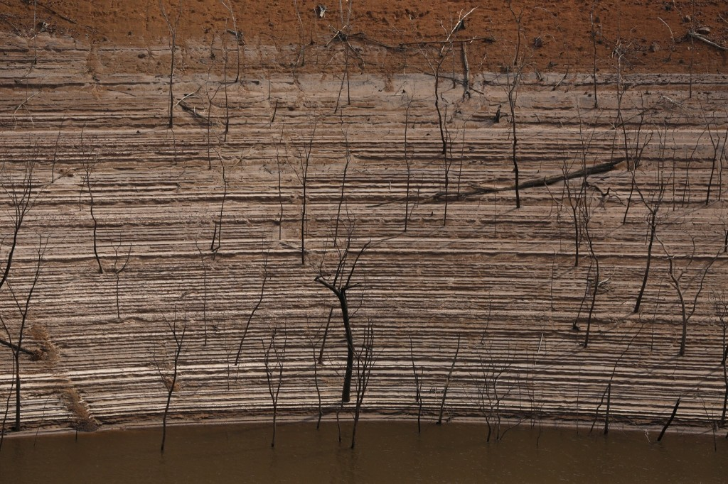 Trees and water marks on previously submerged land at Guri dam in Bolivar state, Venezuela. REUTERS/Carlos Garcia Rawlins