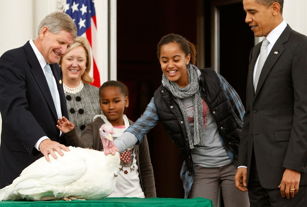 Malia Obama pets 'Courage' as her sister Sasha hangs back in 2009. Alex Wong/Getty Images