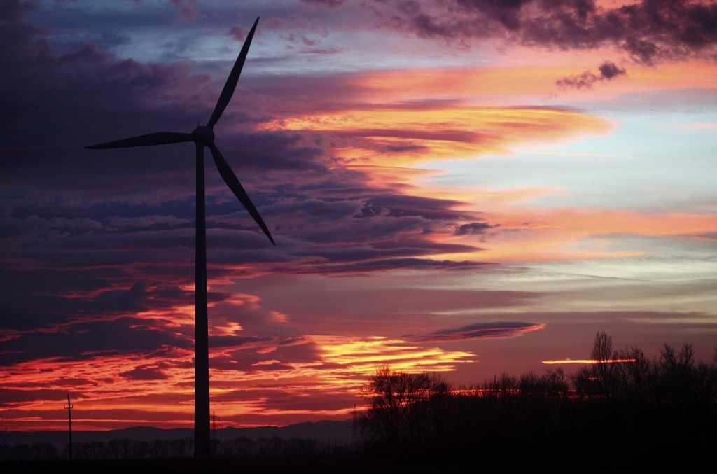 The setting sun near Neusiedl am See, Austria. REUTERS/Heinz-Peter Bader