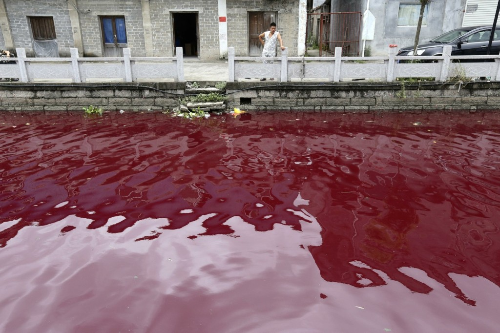 A contaminated river in Cangnan county of Wenzhou, Zhejiang province. REUTERS/Stringer