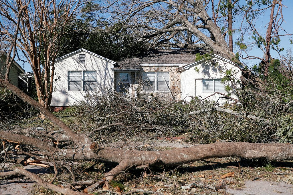 Trees toppled by Hurricane Michael surround a house in Panama City, Florida, U.S., October 13, 2018. REUTERS/Terray Sylvester