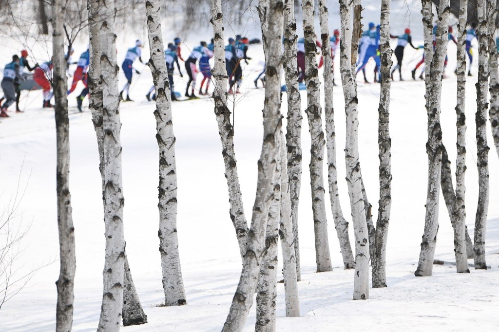 The men's 50km cross country classic at the Alpensia cross country ski centre. FRANCK FIFE/AFP/Getty Images