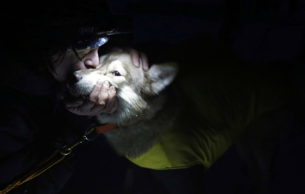 A musher greets his dog during a break in the Sedivackuv Long dog sled race in Destne, Czech Republic. REUTERS/David W Cerny