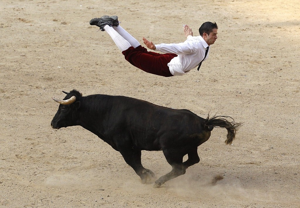 A Spanish recortador jumps over a bull during a show in Cali. REUTERS/Jaime Saldarriaga