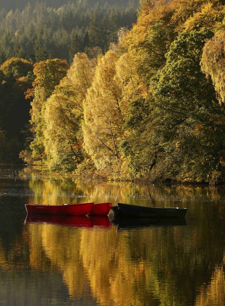 Moored boats on Loch Faskally as autumn leaves are reflected in the water in Pitlochry, Scotland. REUTERS/Russell Cheyne