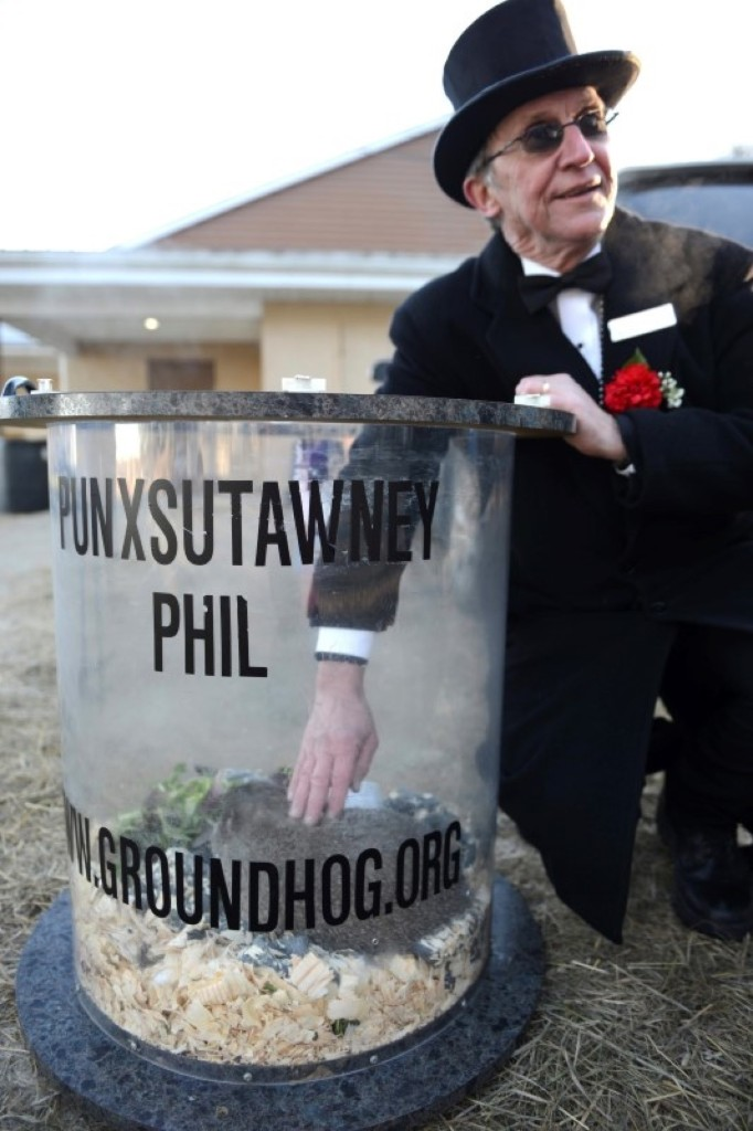 Groundhog co-handler Ron Ploucha pets Punxsutawney Phil in his holding cage following the annual forecast. REUTERS/Alan Freed