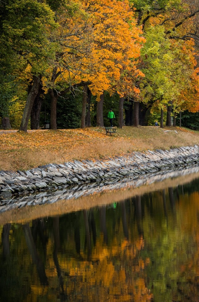 Colorful autumn trees next to Djurgaarden Canal in Stockholm. JONATHAN NACKSTRAND/AFP/Getty Images