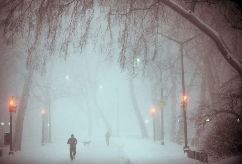 Dog owners and runners in heavy snow and strong wind in Central Park. Astrid Riecken/Getty Images