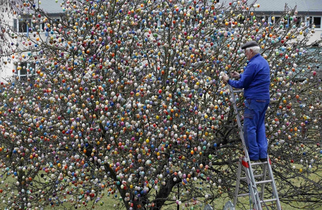 German pensioner Volker Kraft decorates an apple tree with Easter eggs in the eastern German town of Saalfeld. REUTERS/Fabrizio Bensch