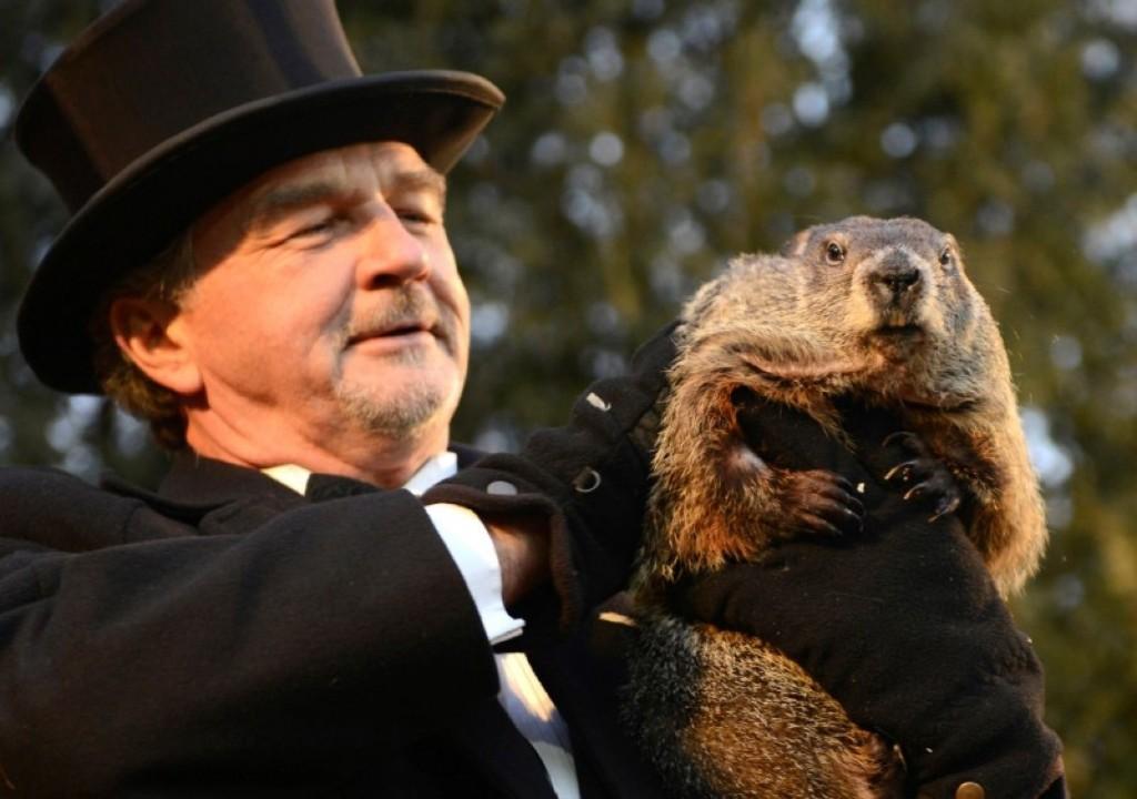 Groundhog co-handler John Griffiths holds up groundhog Punxsutawney Phil after Phil's annual weather prediction. REUTERS/Alan Freed