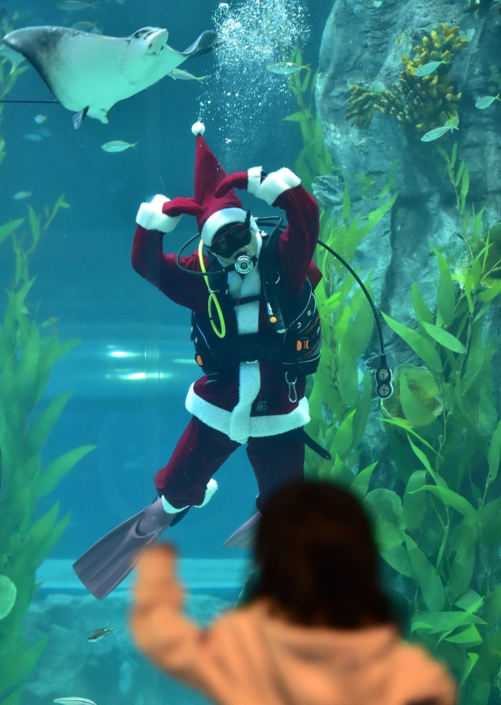 A diver wearing a Santa Claus outfit during an event at Lotte Aquarium in Seoul. JUNG YEON-JE/AFP/Getty Images