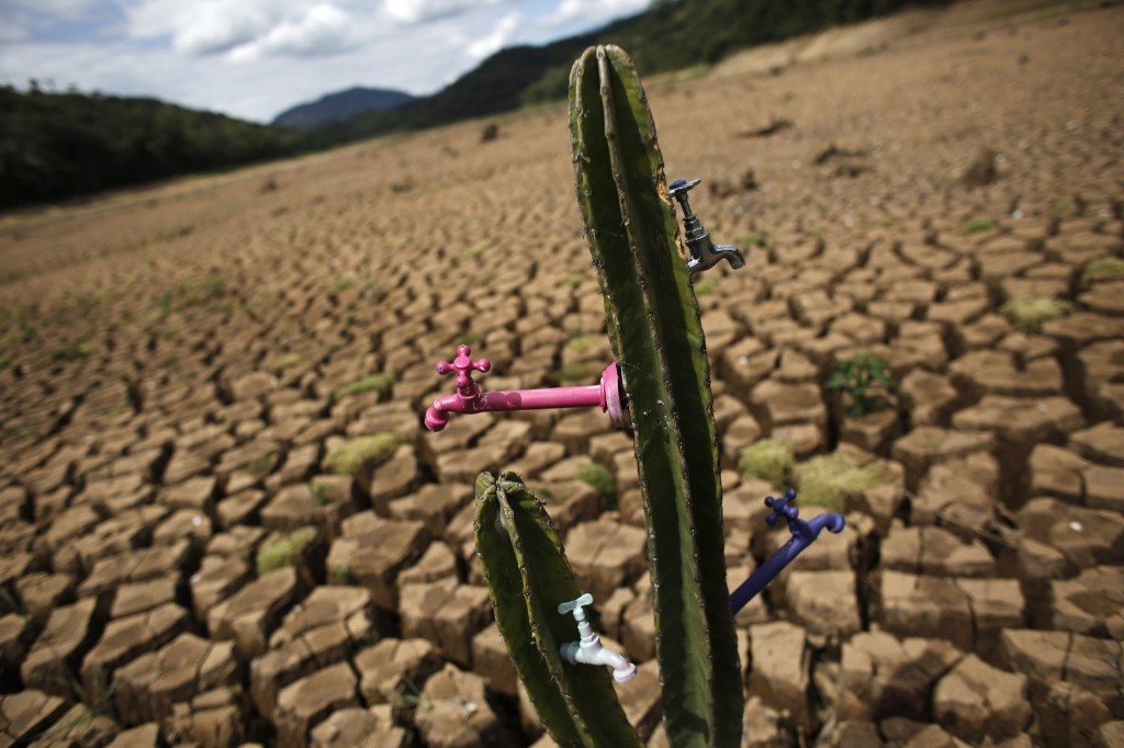 "A drought-related cactus installation called ""Desert of Cantareira"" by Brazilian artist and activist Mundano at Atibainha dam in Nazare Paulista, Sao Paulo. REUTERS/Nacho Doce"