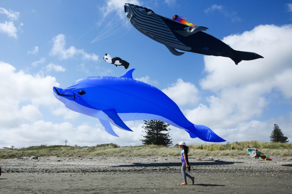Whale, dolphin and panda kites fly during the 4th Otaki Kite Festival at Otaki Beach in New Zealand. Hagen Hopkins/Getty Images