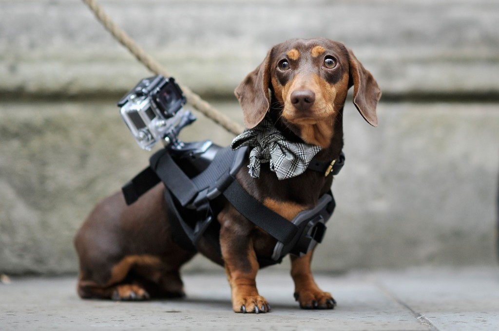 Sergio the Shoe Hunter is seen with his GoPro camera outside the Matthew Williamson show. Gareth Cattermole/Getty Images