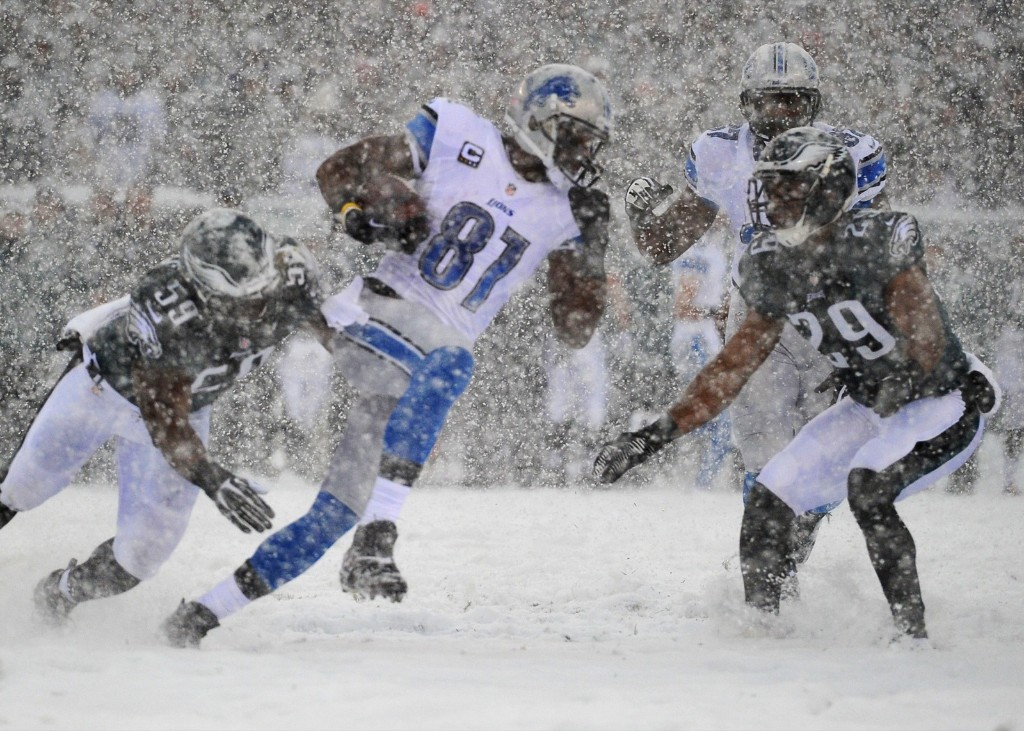 Lions wide receiver Calvin Johnson after making catch against Eagles. Jeffrey G. Pittenger-USA TODAY Sports