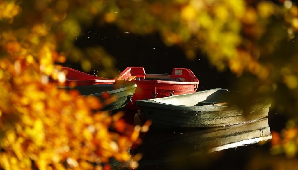Moored boats on Loch Faskally in Pitlochry, Scotland. REUTERS/Russell Cheyne