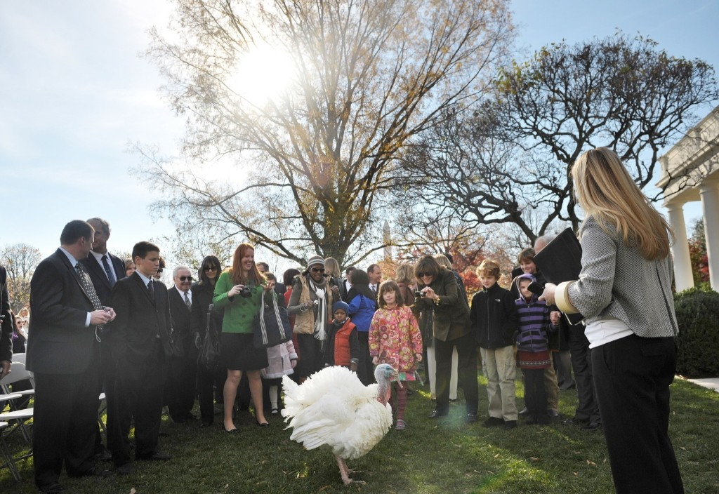 Guests take photographs of 'Apple' before the annual pardon in 2010. MANDEL NGAN/AFP/Getty Images