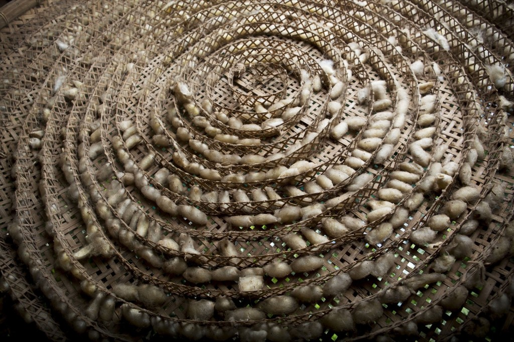 Silkworm cocoons at the Artisans Angkor mill in Siem Reap, Cambodia. Brent Lewin/Bloomberg