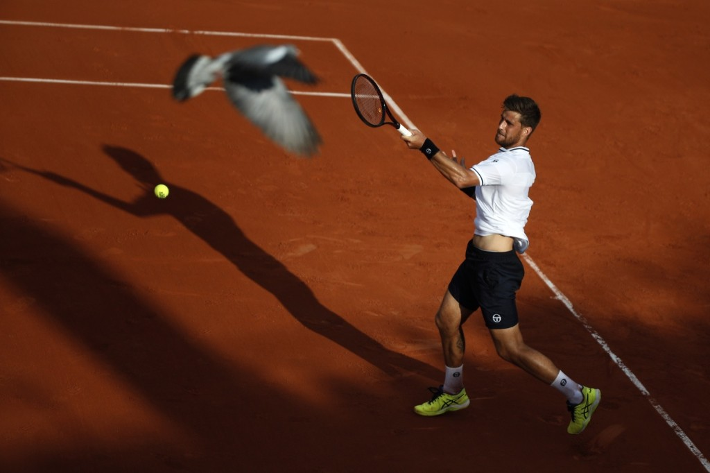 A pigeon flies over the court as Martin Klizan returns a shot against Gael Monfils at the French Open. AP Photo/Christophe Ena