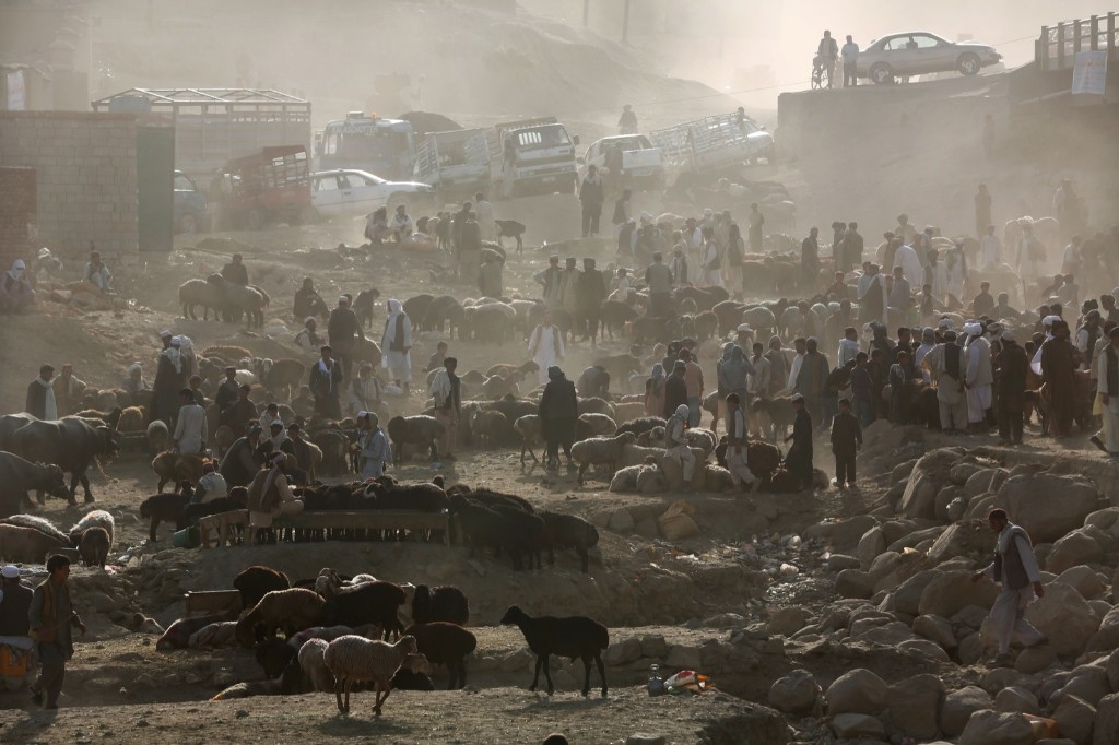 Afghan livestock merchants display animals for sale at a market in Kabul. AP Photo/Massoud Hossaini