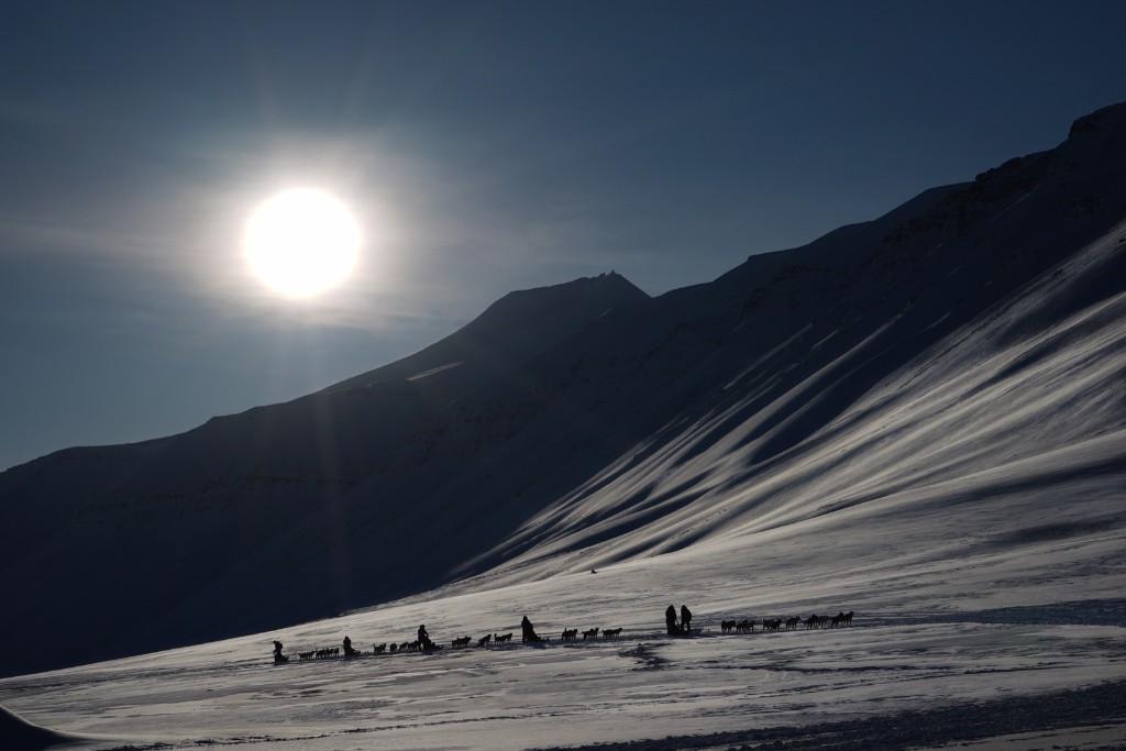 Eclipse watching tourists ride dog sleds outside Longyearbyen, Svalbard, an archipelago administered by Norway. STAN HONDA/AFP/Getty Images