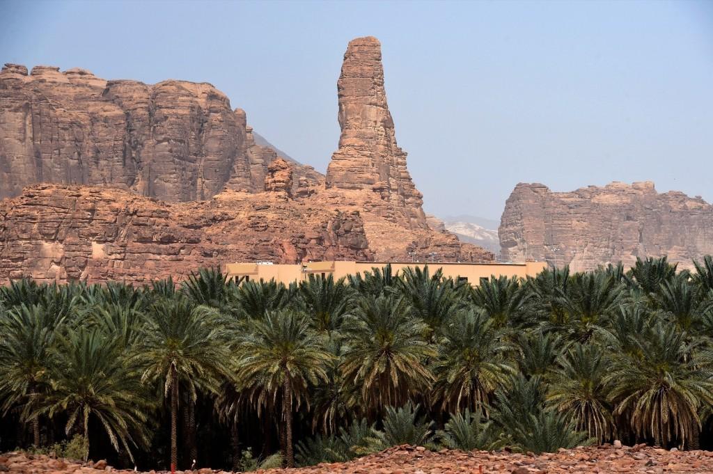 A date farm at the Khuraiba archaeological site near Saudi Arabia's northwestern town of al-Ula. FAYEZ NURELDINE/AFP/Getty Images