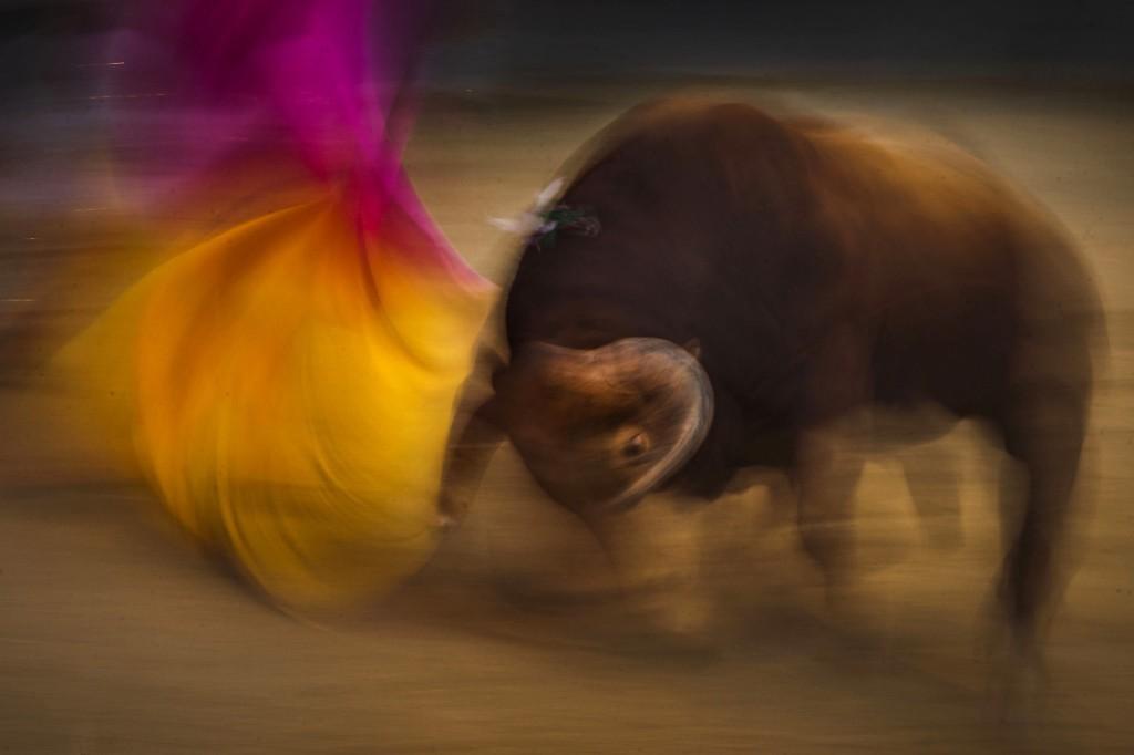 Spanish bullfighter Juan del Alamo and bull at Las Ventas bullring in Madrid. AP Photo/Daniel Ochoa de Olza