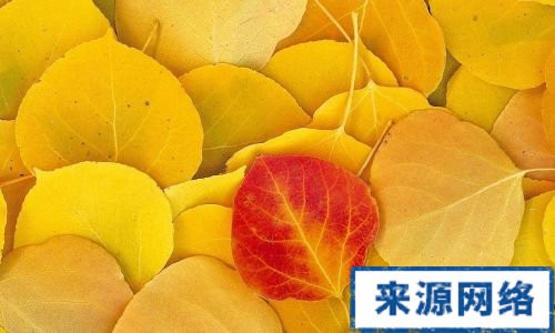家常食疗药方 - Magazine cover