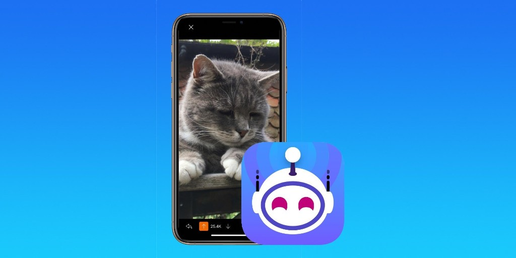 Apollo for Reddit developer launches third annual SPCA animal shelter fundraiser - 9to5Mac