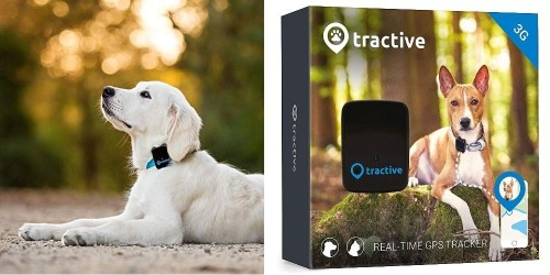 Always have an eye on your pooch with this $40 dog GPS tracker