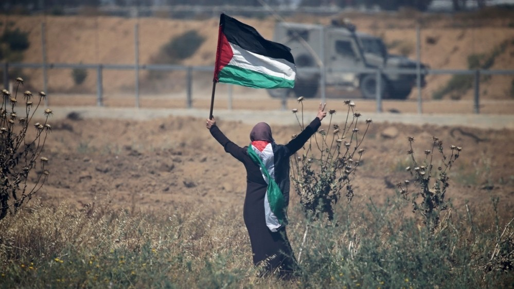 Palestine Edition cover image