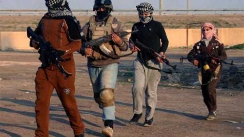 Iraq announces 72-hour truce in Fallujah