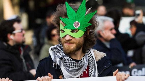 Italy's strict drug law goes up in smoke