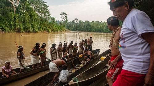 Indigenous race into Ecuador's Amazon to escape coronavirus