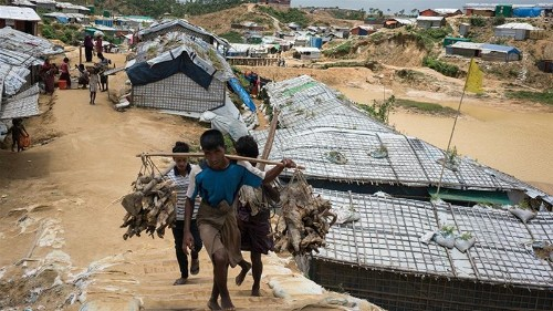 Bangladesh seeks to repatriate 3,000 Rohingya to Myanmar