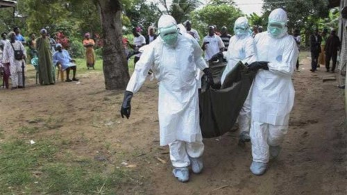 Obama: Too early to send Ebola drug to Africa