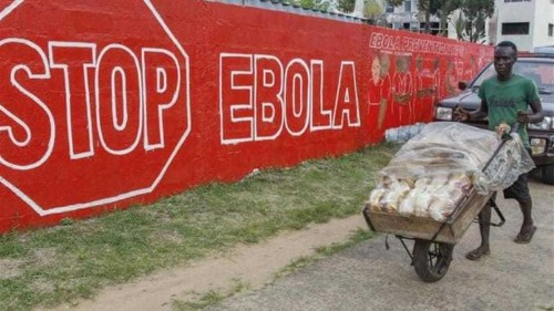 UN estimates Ebola fight to cost nearly $1bn