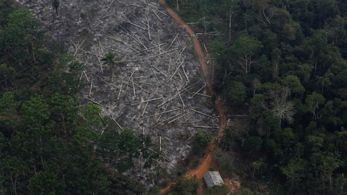 Accelerating deforestation in Brazil endangers EU trade deal