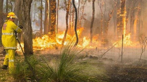 Australia hit by hundreds of new wildfires