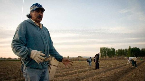 GMO labelling debate grows in the US