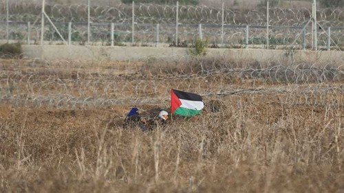 Israeli colonisation is at the root of the violence