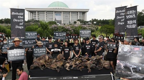 'End this cruelty': Dozens rally in Seoul to ban dog meat trade