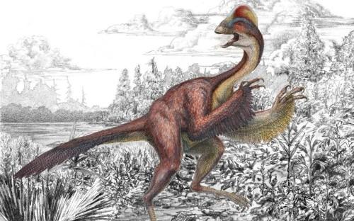 'Chicken From Hell' Dinosaur Named