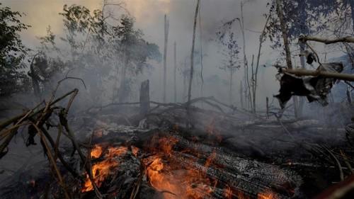 The devastation of the Amazon predates Bolsonaro