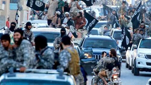 Syria: US raids have failed to weaken ISIL