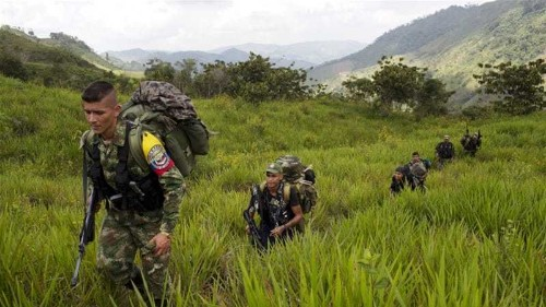 Colombia and FARC rebels ask UN to observe ceasefire