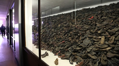 Words used to describe Auschwitz stir controversy, 75 years on